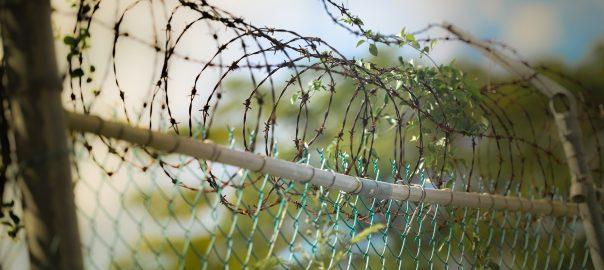 Zastępcza kara aresztu w Kodeksie wykroczeń